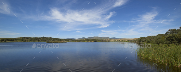 Landscape in extremadura, spain - Stock Photo - Images