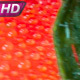 Rotating Ripe Tomatoes - VideoHive Item for Sale