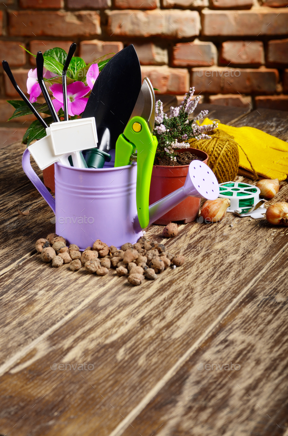 Gardening tools of shovel rake labels and watering can on wooden - Stock Photo - Images
