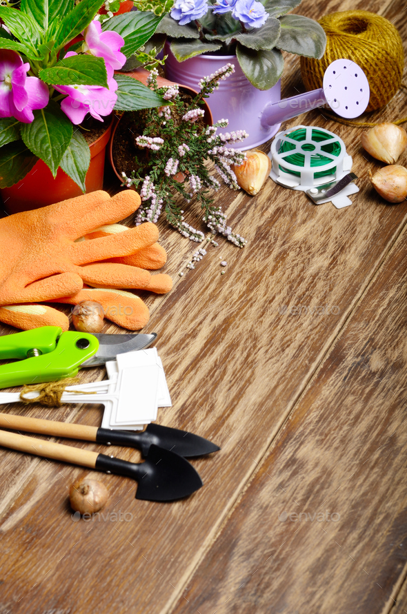 Gardening tools of cutter labels rake rope gloves wire on wooden - Stock Photo - Images