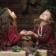 Lovely Twins in Dresses Sitting Among the Christmas Decorations Look Up at the Falling Snow,