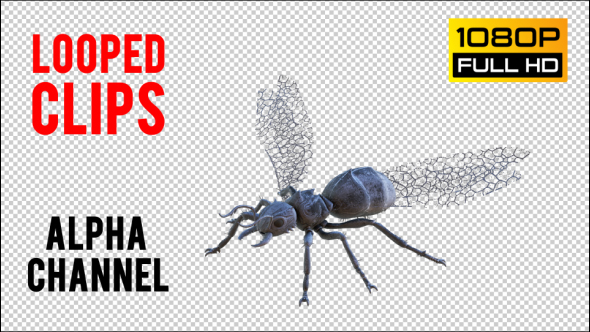 VideoHive Flying Ant 2 Realistic Pack 5 20981760
