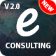 Consulting Business Finance - e Consulting