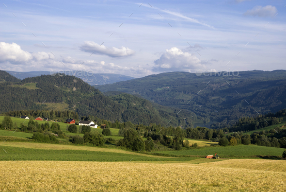 Farmland on a mountain slope in the norwegian valley Gudbrandsdalen - Stock Photo - Images
