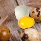 Close up of quail eggs - PhotoDune Item for Sale