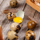 Quail eggs with feather - PhotoDune Item for Sale