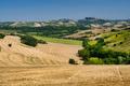 Summer landscape near Monterubbiano (Fermo, Marches)