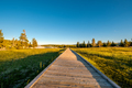 Boardwalk in Yellowstone National Park - PhotoDune Item for Sale