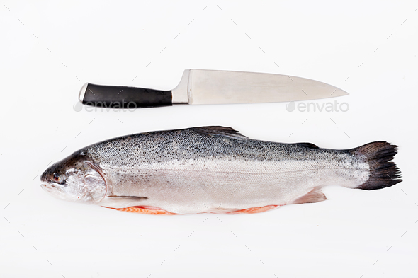 Fresh raw salmon red fish  isolated on a white background. Flat lay. Top view - Stock Photo - Images