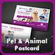 Pet Care Postcard Templates