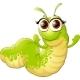 Insect Caterpillar