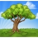 Cartoon Tree Field Landscape Background Scene