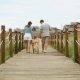 Young Couple Walking Away with Retriever Dog, Wooden Bridge - VideoHive Item for Sale