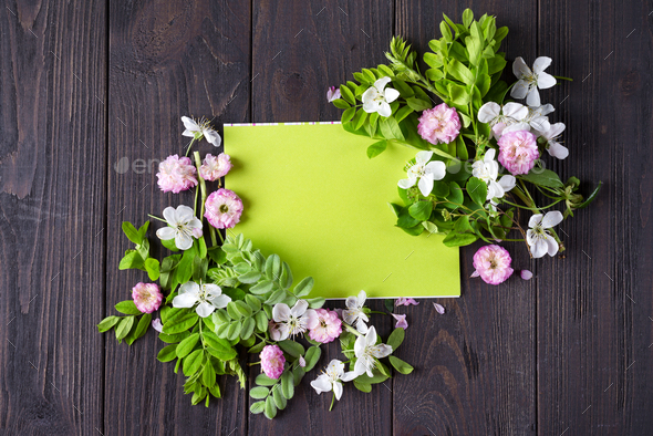 Frame of beautiful flowers - Stock Photo - Images