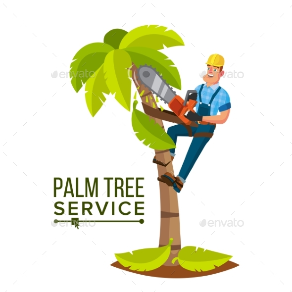 GraphicRiver Palm Tree Service Vector 20993142