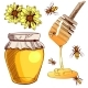Set of Colored Bee and Honey Sketches - GraphicRiver Item for Sale