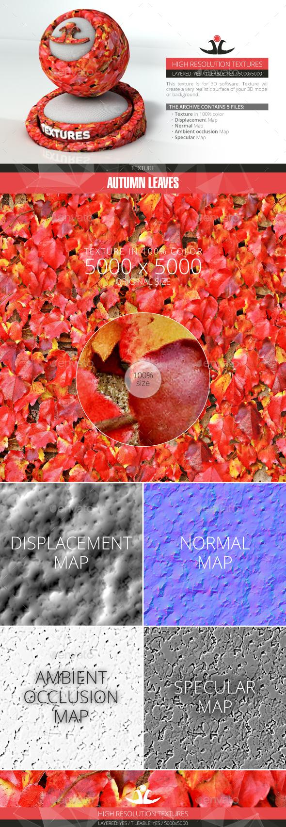Autumn Leaves 16 - 3DOcean Item for Sale