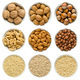 Walnuts, almond, hazelnuts in white bowls on white background - PhotoDune Item for Sale