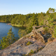 Forest and lake at sunset. Aland islands. Finland nature background.  - PhotoDune Item for Sale