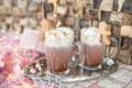 Hot chocolate with whipped cream - PhotoDune Item for Sale