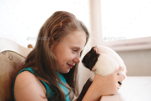 little beautiful girl with guinea pig - Stock Photo - Images