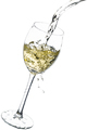 Wineglass on a white background