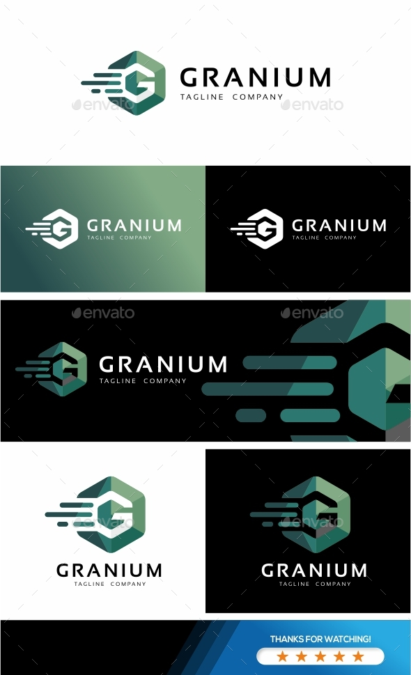 GraphicRiver Granium Hexagon Logo Template 20997643