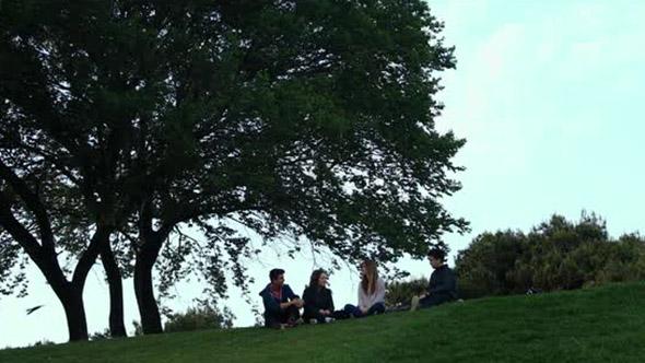 VideoHive Park Friends 20345299