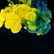Yellow and Cyan Ink Splash on Black Background - VideoHive Item for Sale