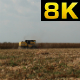 Harvest - VideoHive Item for Sale
