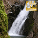 Small Waterfall in Forest - VideoHive Item for Sale