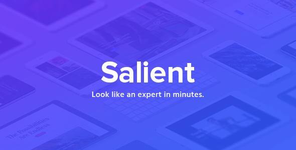 Salient - Responsive Multi-Purpose Theme - Portfolio Creative