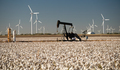 Texas Cotton Filed Textile Agriculture Oil Industry PumpJack - PhotoDune Item for Sale