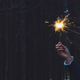 Woman holding sparkler in forest - PhotoDune Item for Sale