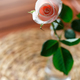 Pink rose in a vase - PhotoDune Item for Sale