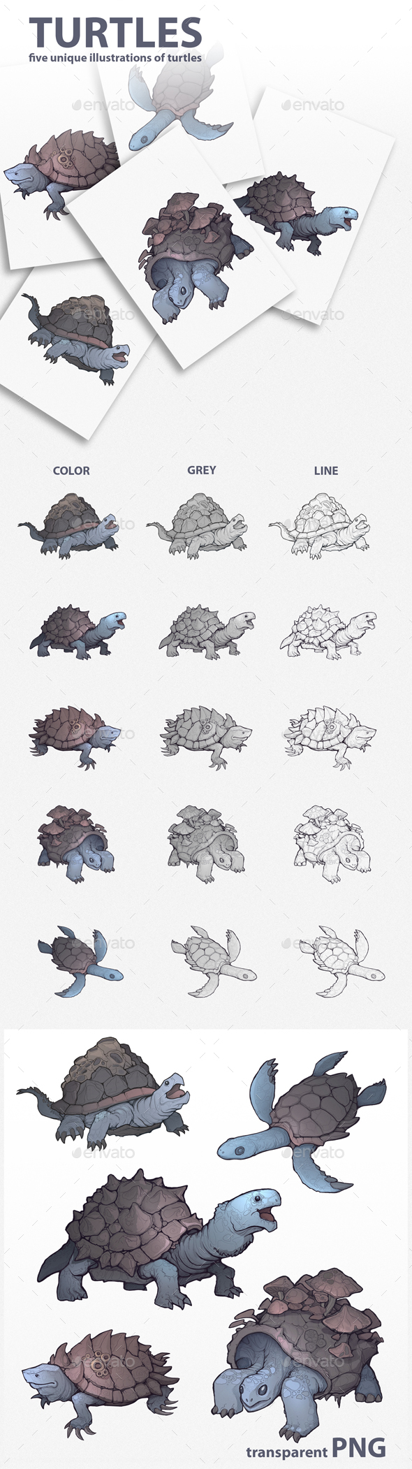 GraphicRiver Turtles Illustrations 21007536