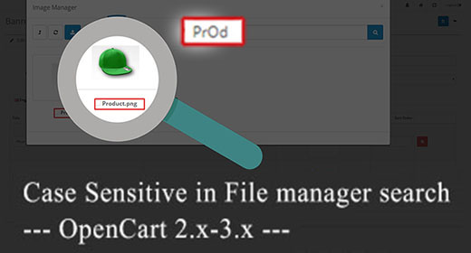 Case Insensitive in file manager search