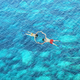 Drone view of couple snorkeling in clear blue sea water - PhotoDune Item for Sale