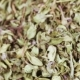 Dried Thyme in Bulk - VideoHive Item for Sale