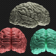 Brain (Looped) - VideoHive Item for Sale
