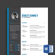 Resume/CV Template - Robert Downey