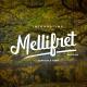 Mellifret script font - GraphicRiver Item for Sale