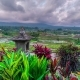 Beautiful Sunset Over the Jatiluwih Rice Terraces in Bali, Indonesia - VideoHive Item for Sale
