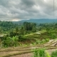 Jatiluwih Rice Terraces in Bali, Indonesia - VideoHive Item for Sale