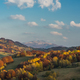 Vibrant colors of autumn in wilderness of Carpathia Mountains,Bi - PhotoDune Item for Sale