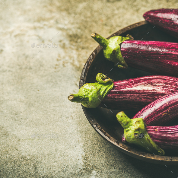 Fresh raw Fall harvest purple eggplants, copy space - Stock Photo - Images
