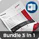 Invoice Bundle 3 in 1