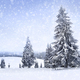 Fairy winter landscape with fir trees and snowfall. Christmas greetings concept - PhotoDune Item for Sale