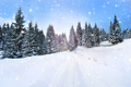 Christmas winter landscape with fir trees and snowfall - PhotoDune Item for Sale