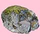 Sir Stirling Moss Rock